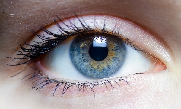 the left eye of a woman