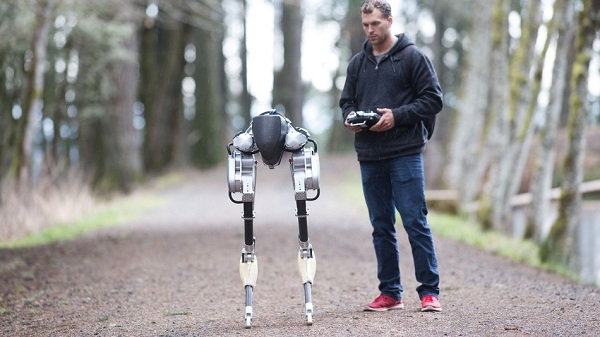 bipedal robot with man