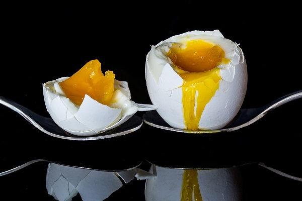 choline egg yolk