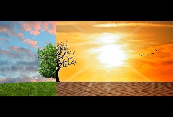 climate changes landscape