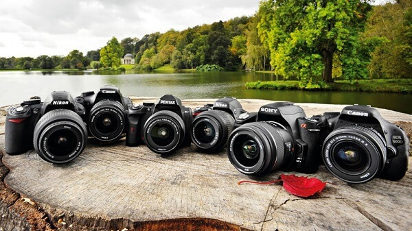 Top 7 Best Entry Level DSLR Cameras – A Guide to Begin With